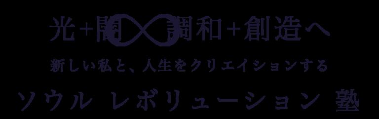 ソウルレボリューション塾